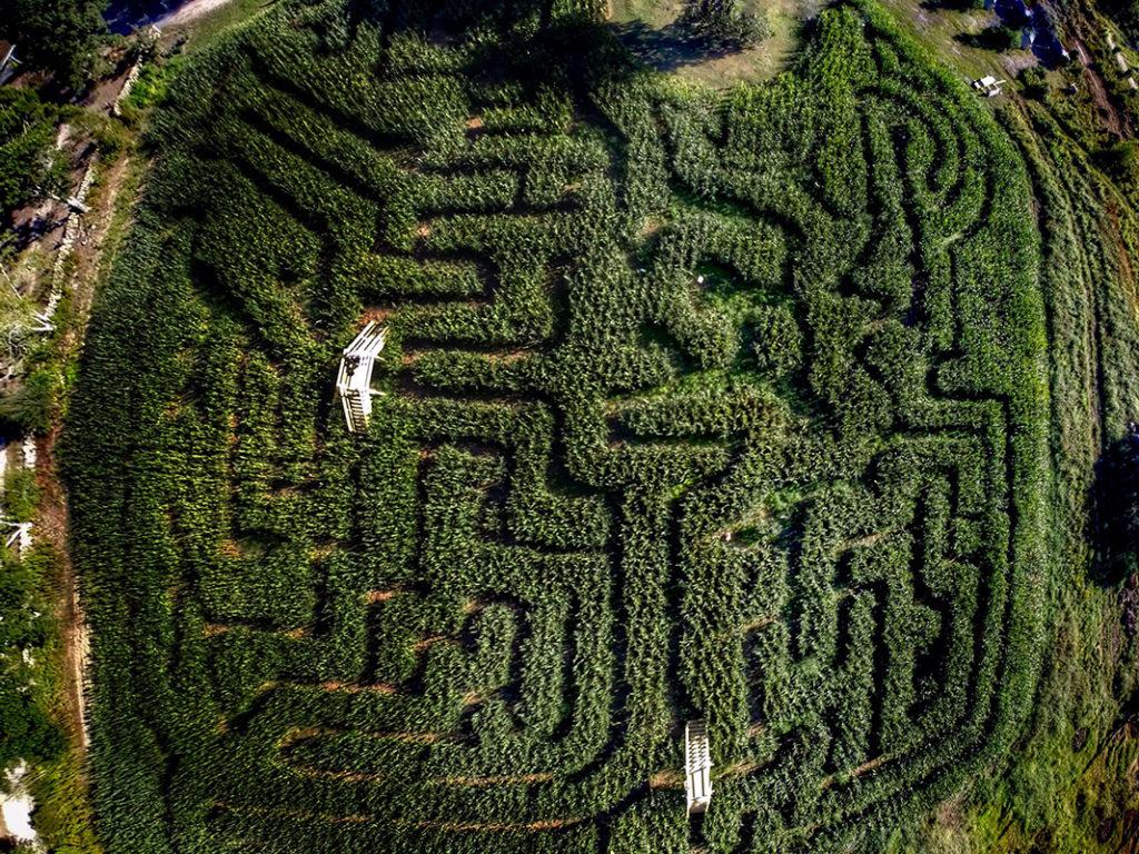 Clark Farms Corn Maze Aerial View