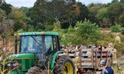 Clark Farms Gallery Image 17